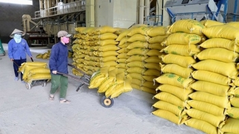 Vietnam to stock 190.000 tons of rice for food security amid COVID-19