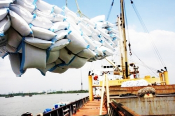 bangladesh to import 50000 tons of rice from vietnam