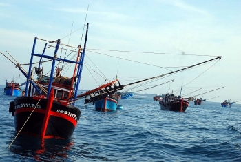 philippines shipping company compensates for vietnamese fishing boat collision