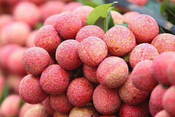 Vietnamese Thieu lychee granted certificate of geographical indication in Japan