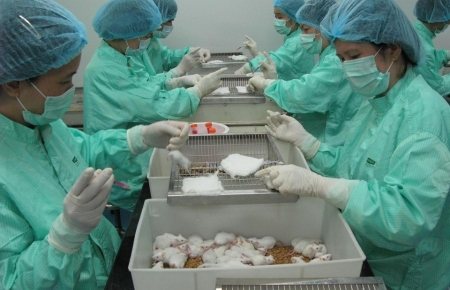 Vietnam to continue testing COVID-19 vaccine on mice