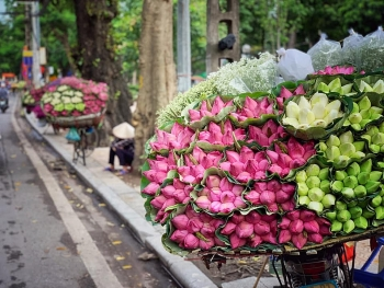 daily life in vietnam now is the dream of many countries around the world deputy pm