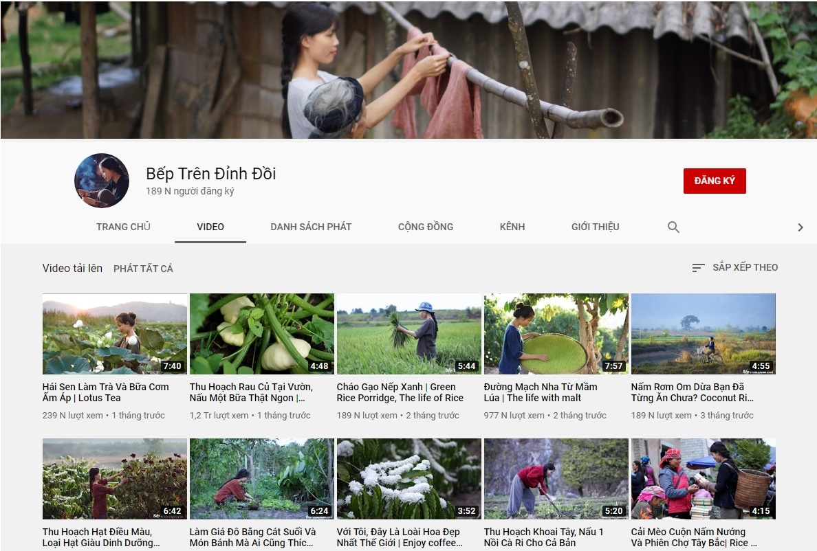 vietnamese youtuber suspected of copying chinese vlogger li ziqi