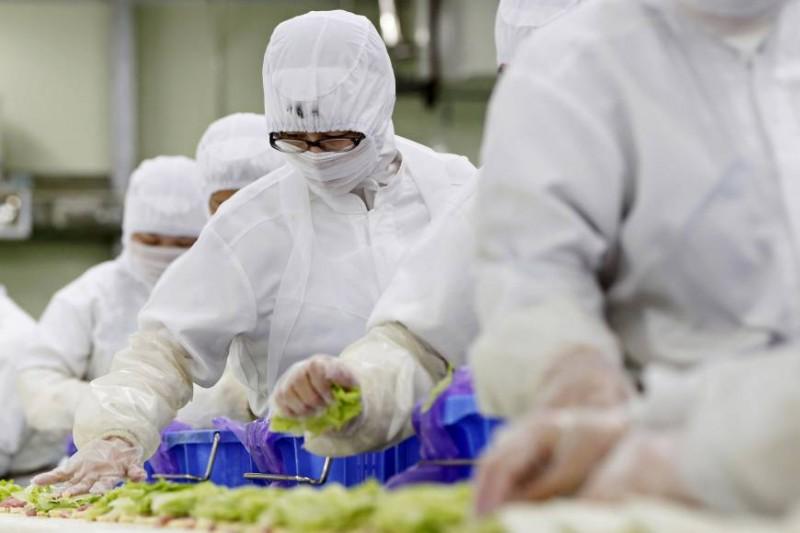 vietnam ranks first in number of laborers granted japans new work visa