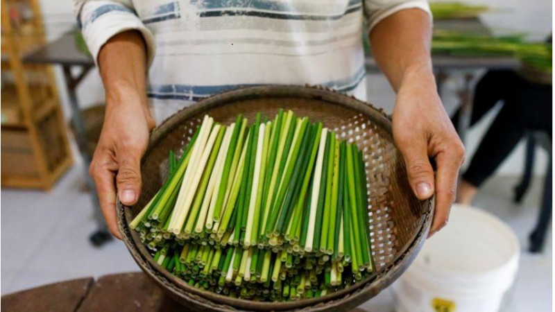 vietnamese grass is greener in battle against plastic straws