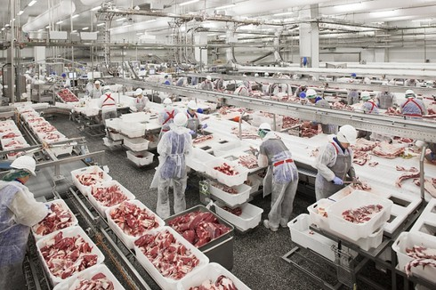Vietnam purchased nearly 3,500 tonnes of pork from Russia