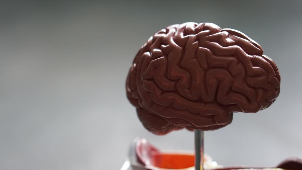 scientists fear potential wave of covid linked brain damage