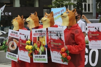 south korea mock funeral for dog held on dog meat day