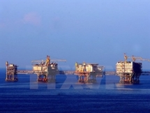vietsovpetro targets 51 million tonnes of crude oil in 2015