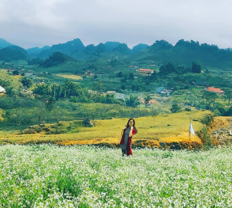 Discovering the scenic beauty of Moc Chau Plateau