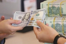 Overseas remittances heating up for Tet holiday