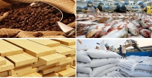 agro forestry and fishery exports estimated at us 61 billion in first two months