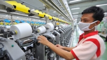 textile and garment exports are set for a boom this year