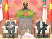 vietnam and algeria should boost cooperation and exchanges