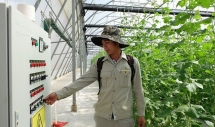 vietnamese engineers aspire to make strides in farming technology