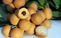 promising future for vietnamese longan in australian market