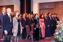 vietnam netherlands mark 45 years of diplomatic relations