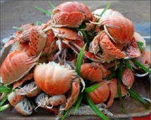10 best foods in quy nhon and where to find them