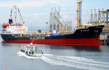 vietnams coastal economic zones strive for low carbon economy