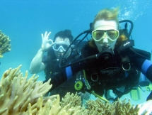 undersea walking tour launched in cu lao cham