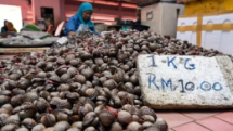 risk of heavy metal poisoning from eating shellfish from straits of malacca malaysia scientists