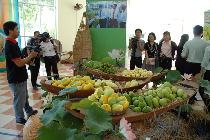 First Vietnamese mango export to the US