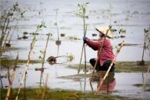 fondation chanel un women partner to accelerate rural womens economic empowerment