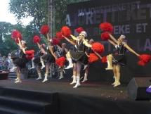 cultural event celebrates 45 years of belgium vietnam diplomatic relations