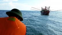fishing boat sinks 31 crew members on board successfully rescued