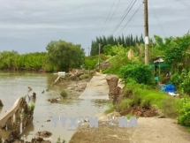 ca mau measures to mitigate damages from natural disasters