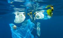 thailand bans single use plastic bags at major stores