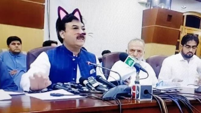 Pakistani politician accidentally wears cat filter during livestream