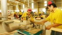 vietnam a rising star in wood exports