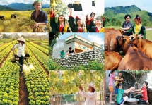 additional usd507 million for nations agriculture poverty reduction and green infrastructure