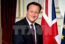 pm cameron huge untapped potential in uk vietnam trade ties