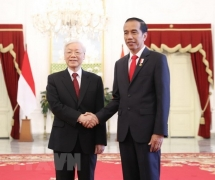 vietnam indonesia eye stronger strategic partnership