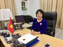 vietnam singapore further develop strategic partnership