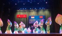 vietnam singapore diplomatic ties anniversary marked in hcm city