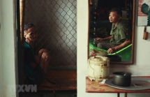 us court ruling on monsanto bolsters hope for vietnamese ao victims