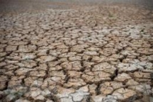 record drought and salinity with desperate fresh water shortage mekong delta crying for help