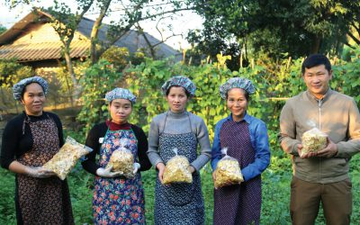 Bac Kan: Empowering women farmers in agricultural value chains