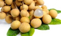 vietnam steps up work to help longan enter australian market