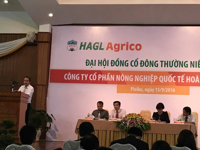 Without the government's help, HAGL will sell 20,000 hectares of rubber for Chinese partner