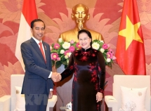 top legislator affirms support for vietnam indonesia relations