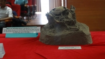 more prehistoric remains found in krong no volcanic caves