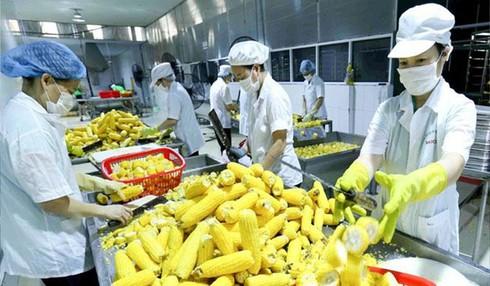 Door open wide for farm produce export to Europe