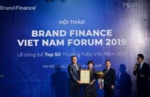 vietnamese national brand has incresed 8 levels