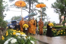 second daisy flower festival in quang ninh province