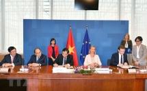 vietnam eu sign flegt vpa to fight illegal logging