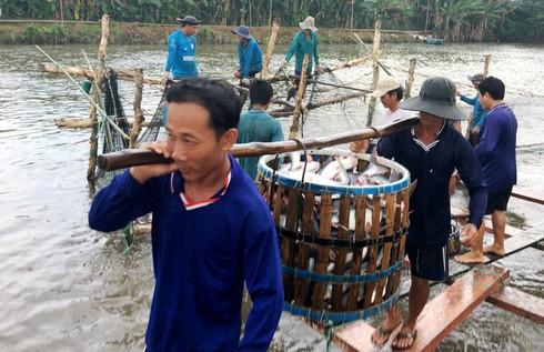 US remains Vietnam's largest aquatic export market